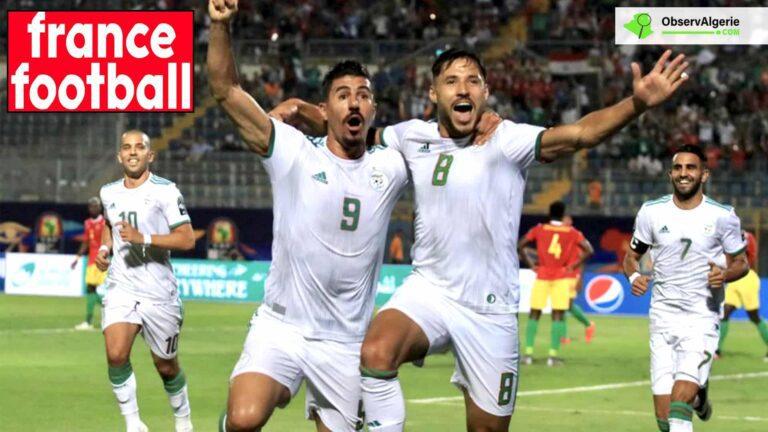 Joueur maghrébin de l'année : Six Algériens nominés